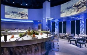 Deep Blu Seafood Grille