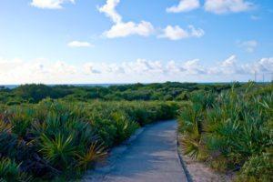 Juno Dunes Natural Area