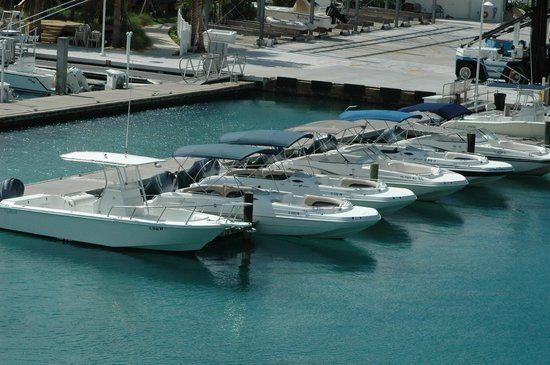 Jupiter Inlet Boat Rental